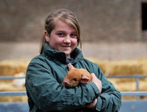 Amy Hurley from Vickertown Co Laois with a Kune Kune pigles, iri
